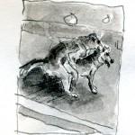 dogs in london storyboard detail