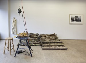 installation view (logs and power carver)