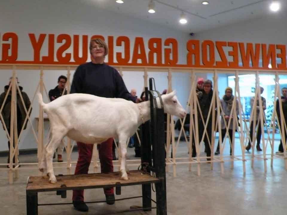 Goat in Regina